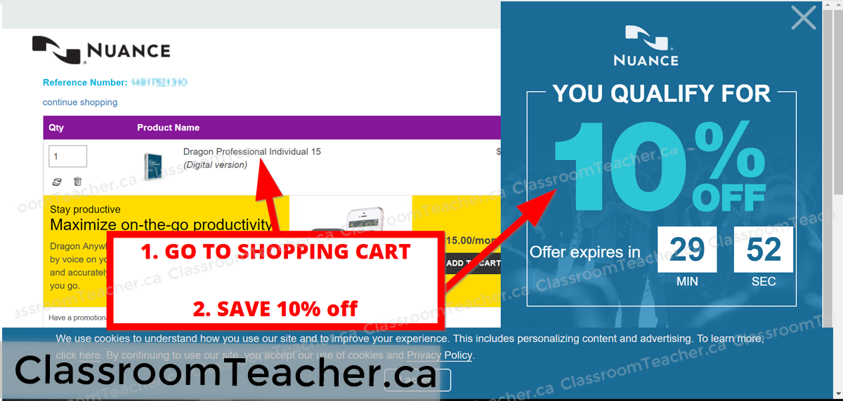 Screenshot of shopping cart showing a pop up discount sale of 10% off the entire shopping cart